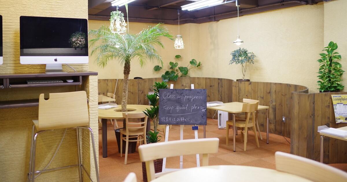 観葉植物のあふれるENGLISH COMPANYスタジオ